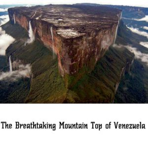 Mountain Top of Venezuela
