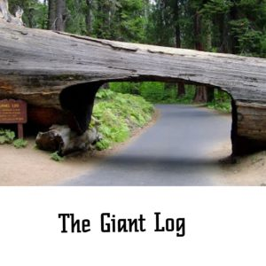 The Giant Log