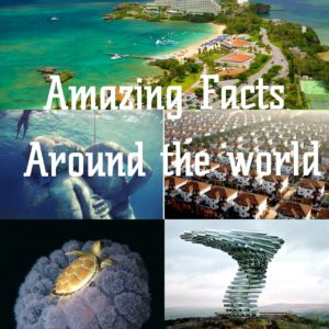 amazing facts around the world