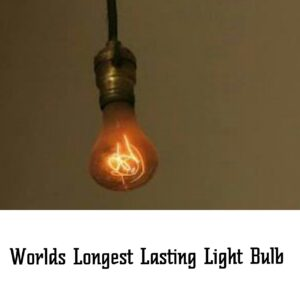 worlds longest lasting light bulb