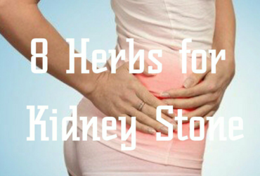Herbs For Kidney Stones