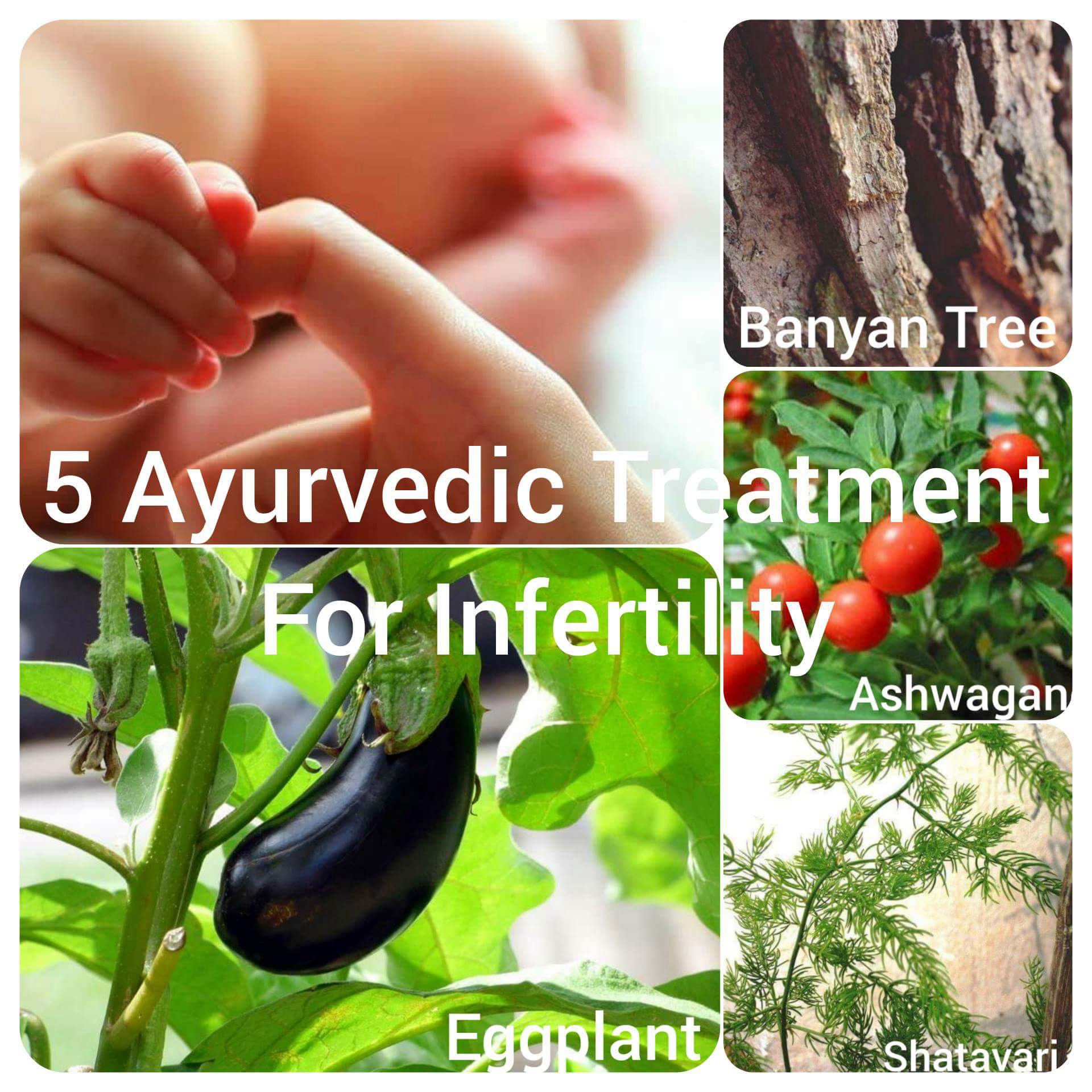5 Effective Ayurvedic Treatment for Infertility