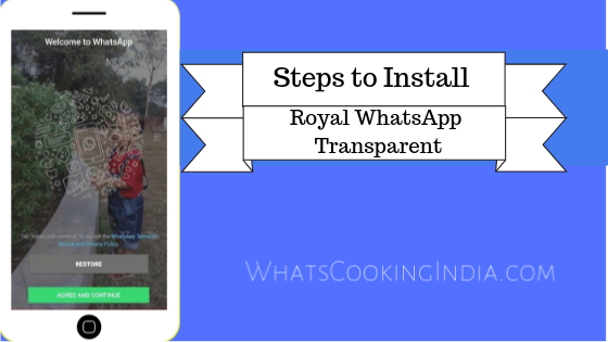 How to Install Royal WhatsApp Transparent: A Helpful Illustrated Guide